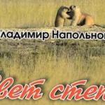 Напольнов_книга мин