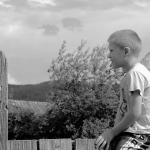 Мальчик на заборе