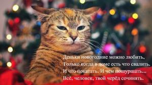 N_Y_cat